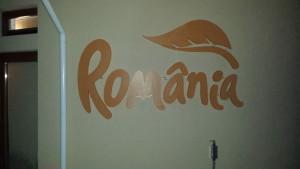 Logoul Romania polistiren cu leduri